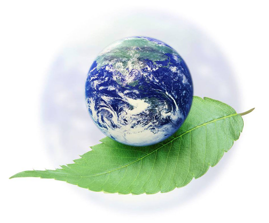 Eat Green and Clean for Earth Day – Dietitian Cassie